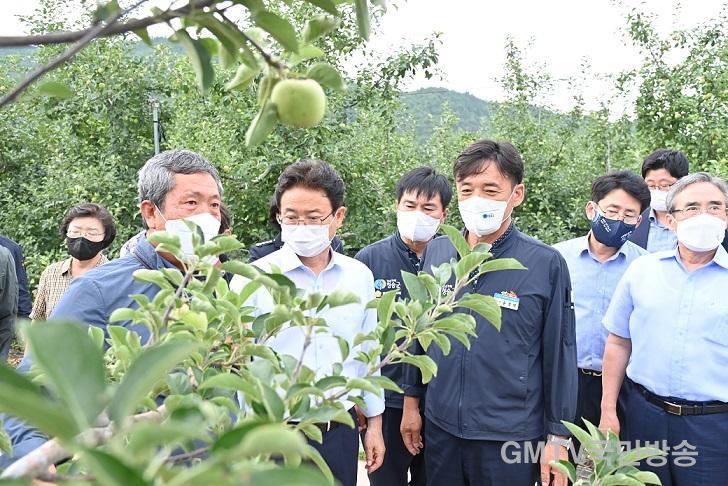 210726보도자료(청송군, 과수농사도 이제는 똑똑한 스마트팜으로) (1).JPG