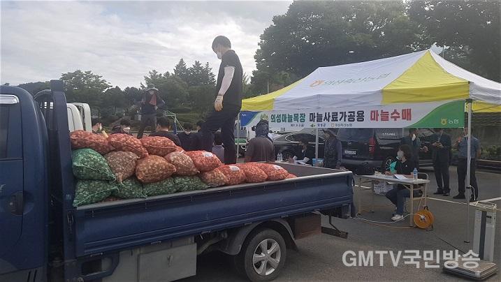 03의성군제공 마늘목장 마늘수매2.jpg